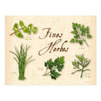 Hierbas receta, perejil, cebolletas, estragón de tarjetas postales