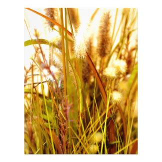 Hierbas salvajes secadas del otoño membrete a diseño