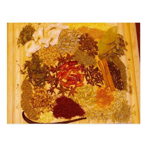 Hierbas y collage de las especias postal
