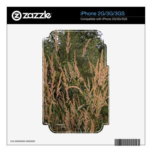 Hierbas y verde calcomanías para iPhone 3