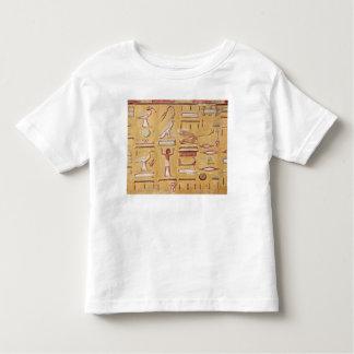 Hieroglyphics, de la tumba de Seti I Playeras
