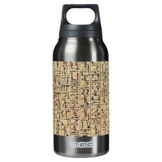 Hieroglyphs Insulated Water Bottle