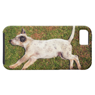 High angle of a dog lying in the grass sleeping. iPhone SE/5/5s case