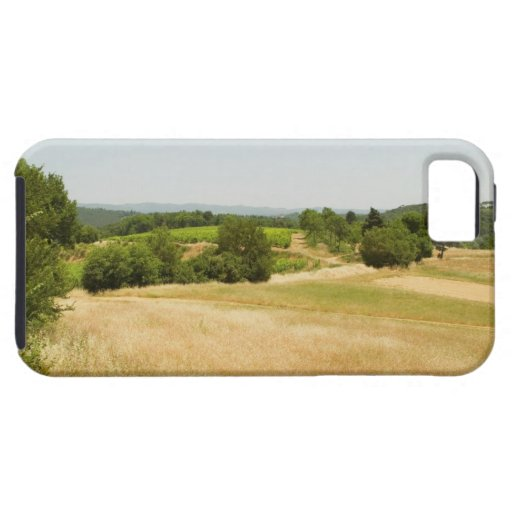 High angle view of a field, Siena Province, 2 iPhone 5 Case