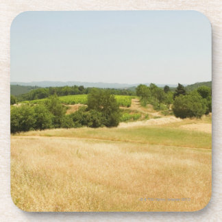 High angle view of a field, Siena Province, 2 Drink Coaster