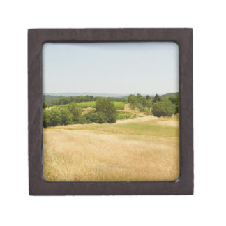 High angle view of a field, Siena Province, 2 Gift Box