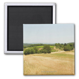 High angle view of a field, Siena Province, 2 Magnet