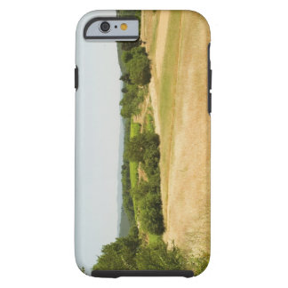 High angle view of a field, Siena Province, 2 Tough iPhone 6 Case