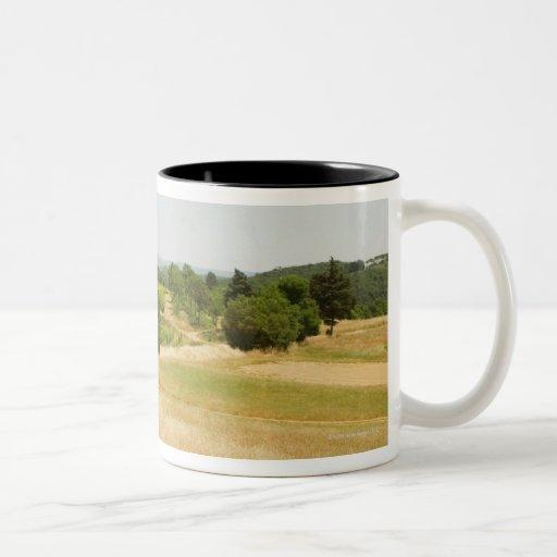 High angle view of a field, Siena Province, 2 Two-Tone Coffee Mug