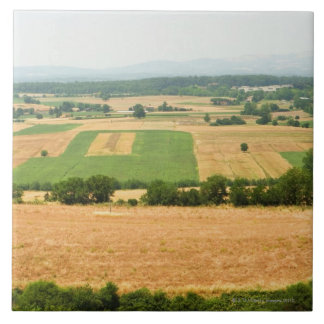 High angle view of a field, Siena Province, Ceramic Tile