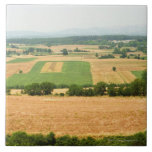 High angle view of a field, Siena Province, Large Square Tile