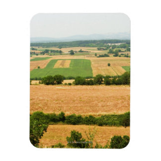 High angle view of a field, Siena Province, Magnet