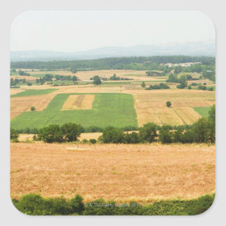 High angle view of a field, Siena Province, Square Sticker