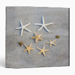 High angle view of a starfish on the beach 3 ring binders