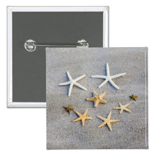 High angle view of a starfish on the beach button