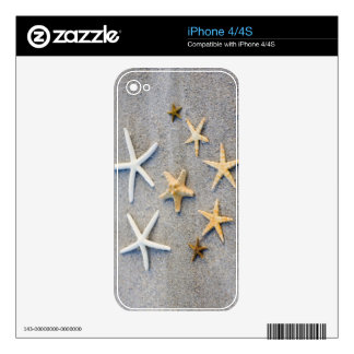 High angle view of a starfish on the beach iPhone 4 skin