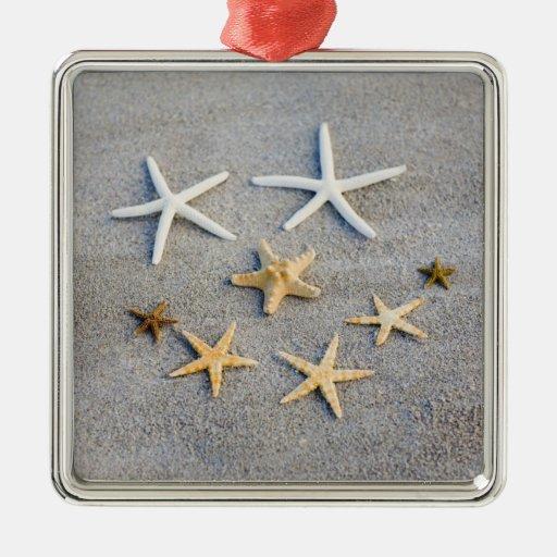 High angle view of a starfish on the beach christmas ornament