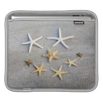 High angle view of a starfish on the beach sleeve for iPads