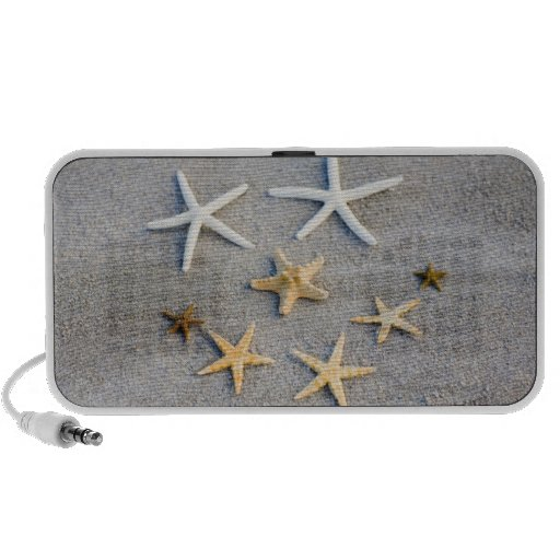 High angle view of a starfish on the beach travel speakers