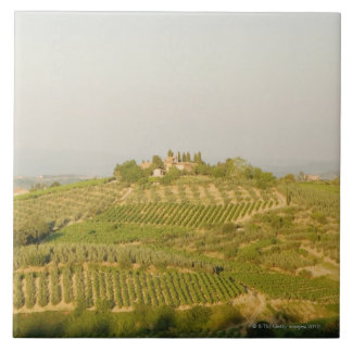 High angle view of a vineyard, Siena Province, Ceramic Tile