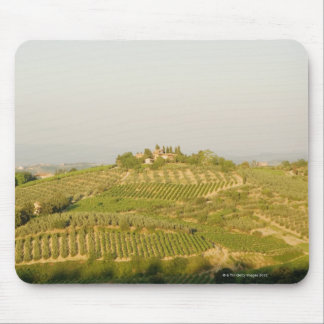 High angle view of a vineyard, Siena Province, Mouse Pad