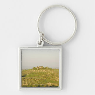 High angle view of a vineyard, Siena Province, Silver-Colored Square Keychain