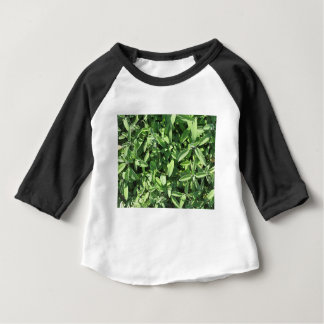 High angle view of sage plant in the garden baby T-Shirt