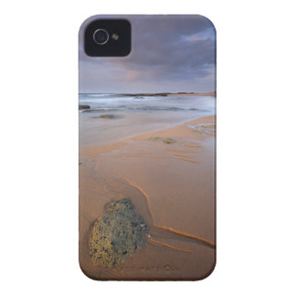High angle view of shoreline rocks at dawn and iPhone 4 case