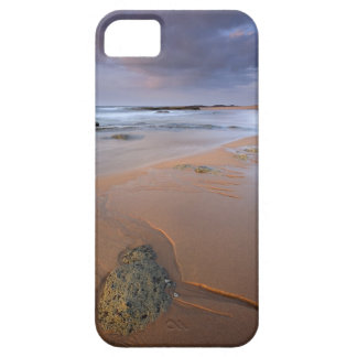 High angle view of shoreline rocks at dawn and iPhone SE/5/5s case