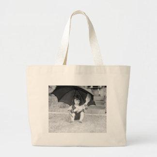 High-Class Vaudeville: 1923 Canvas Bags
