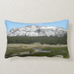 High Country Mountain Stream I Lumbar Pillow