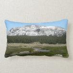 High Country Mountain Stream I Yosemite Park Lumbar Pillow