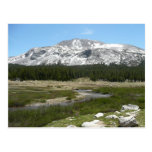 High Country Mountain Stream I Yosemite Park Postcard