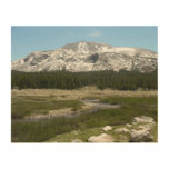 High Country Mountain Stream I Yosemite Park Wood Wall Art