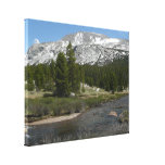 High Country Mountain Stream II Yosemite Park Canvas Print