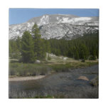 High Country Mountain Stream II Yosemite Park Ceramic Tile