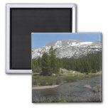 High Country Mountain Stream II Yosemite Park Magnet