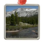 High Country Mountain Stream II Yosemite Park Metal Ornament