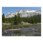 High Country Mountain Stream II Yosemite Park Photo Print