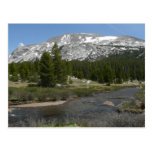 High Country Mountain Stream II Yosemite Park Postcard
