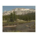 High Country Mountain Stream II Yosemite Park Wood Print