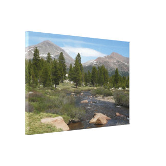 High Country Mountain Stream III Yosemite Park Canvas Print