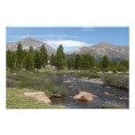 High Country Mountain Stream III Yosemite Park Photo Print