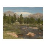 High Country Mountain Stream III Yosemite Park Wood Wall Decor