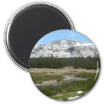 High Country Mountain Stream Yosemite Magnet