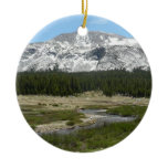 High Country Mountain Stream Yosemite Ornament