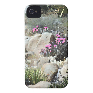 HIGH DESERT Case-Mate iPhone 4 CASE