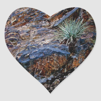 HIGH DESERT COLORFUL ROCKS WITH CACTUS HEART STICKER