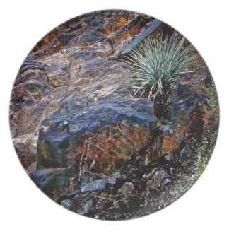 HIGH DESERT COLORFUL ROCKS WITH CACTUS PLATE