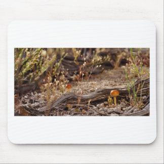 High Desert Shroom Mouse Pad